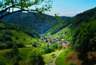 Jaki biznes otworzyć na wsi? Pięć wskazówek, które mogą przynieść sukces